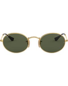 Oval Flat Lenses太阳眼镜